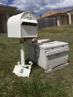 Bee-free letterbox