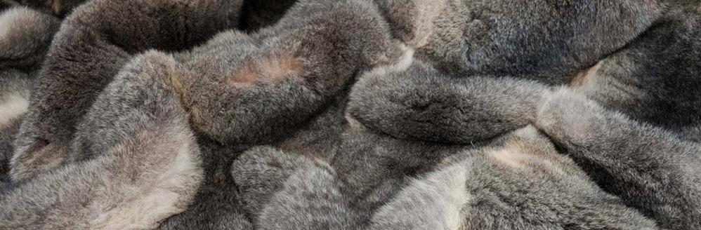 grey possum fur blanket