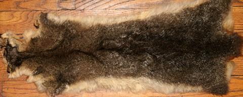 possum fur floor carpet