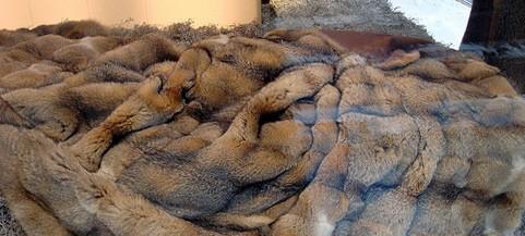 possum fur blanket