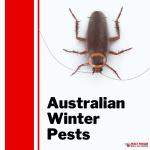 Australian winter pests